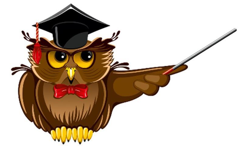Картинка мудрой совы для детей